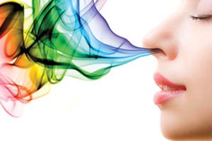 marketing olfativo en las empresas